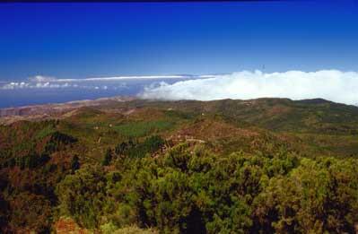 Nationalpark Garajonay en la Gomera