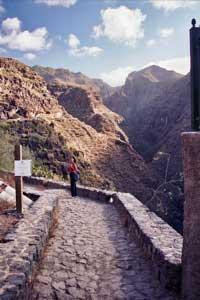 Wandern in den Barrancos von Teneriffa