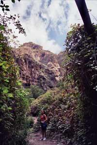Wandern im Barranco del Infierno Teneriffa